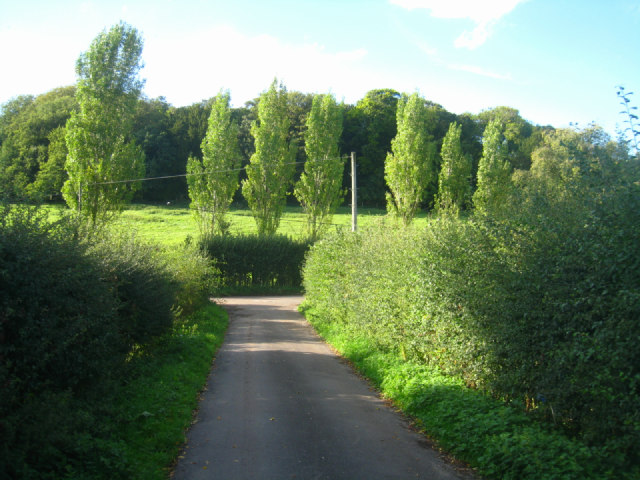 Lane to Steventon Church