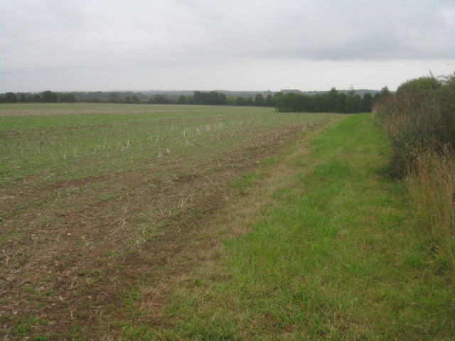 Farmland north of Overton Mill