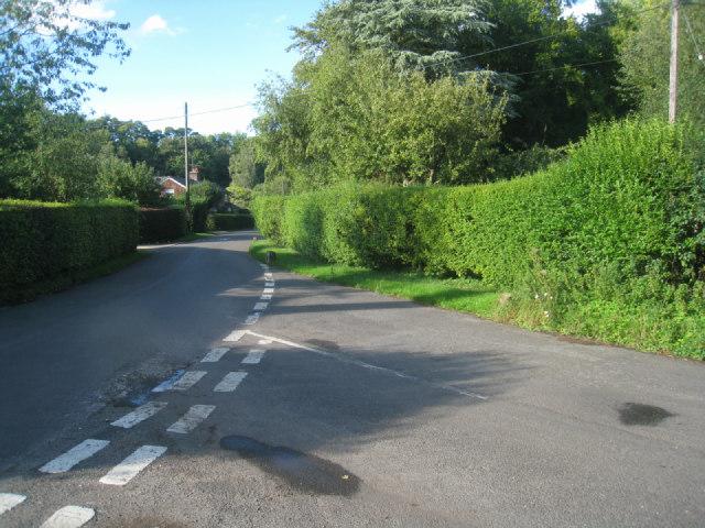 Lane junction - Steventon