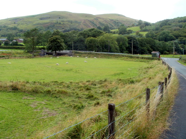 Sheep grazing in a field, Glyntawe