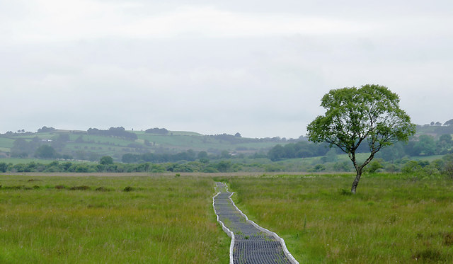 Cors Caron south-east of Swyddffynnon, Ceredigion