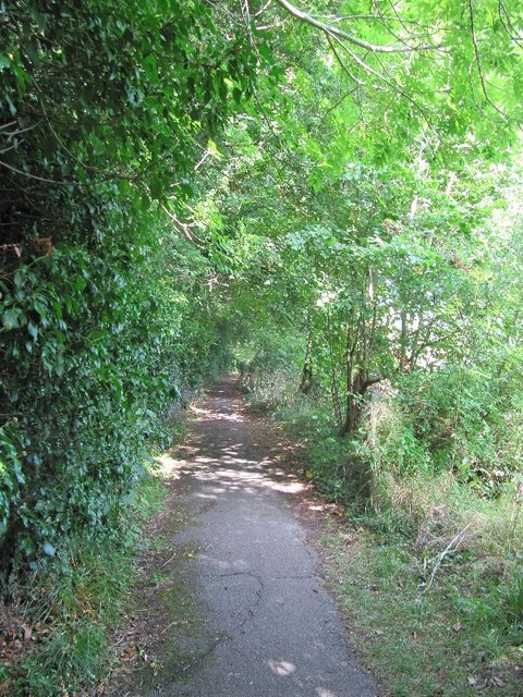 View along the path
