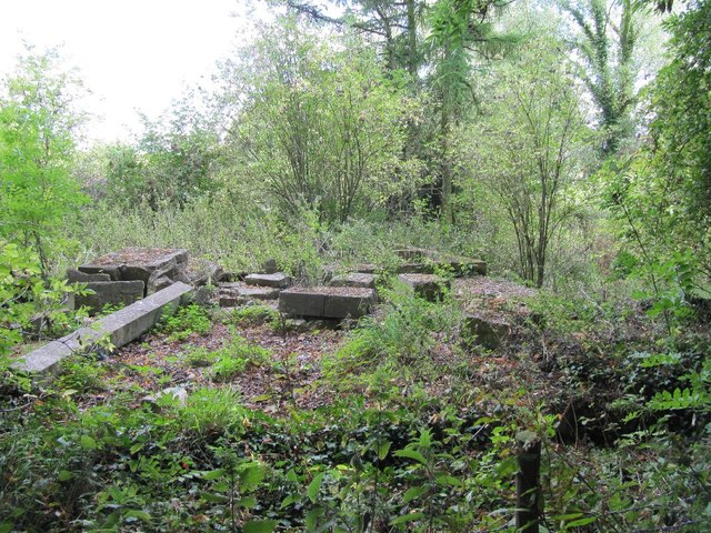 Ruins by the path