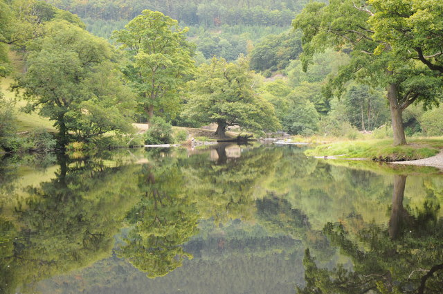 Trees mirrored in the Dee