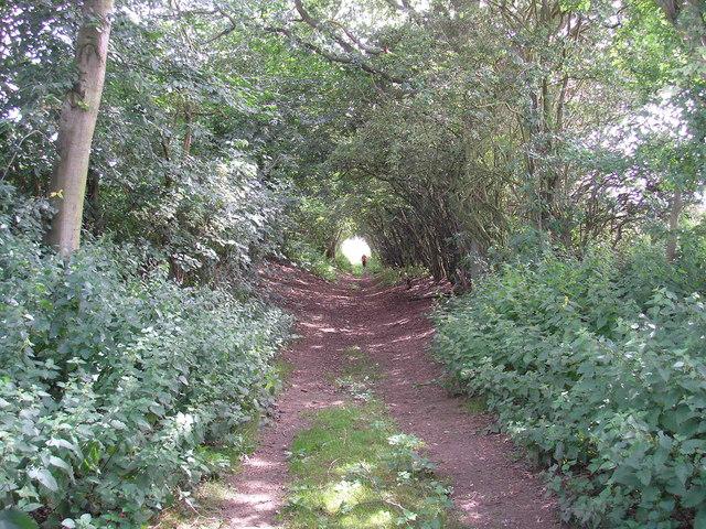 St Andrew's Lane