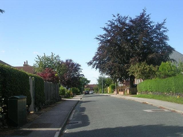The Avenue - West End Lane