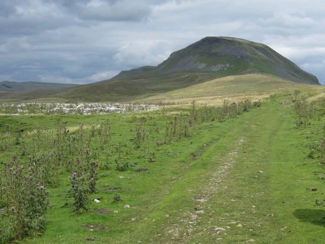 View to Pen-y-ghent from Long Lane