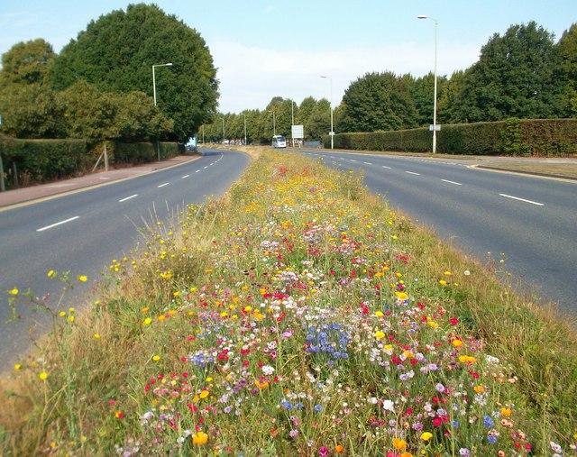 Flowery Road