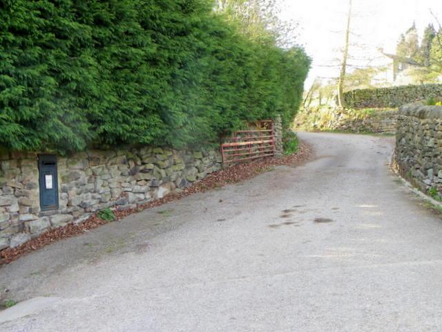 Driveway to Tiplady Farm