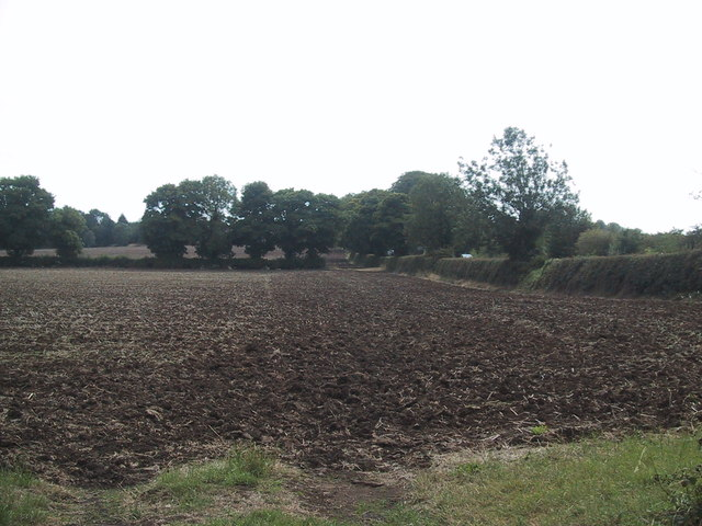 Arable field by the A4260