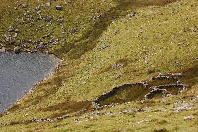 Sheepfolds near Llyn Ffynnon-y-gwas