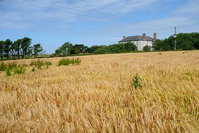 Towards Angrouse Farm