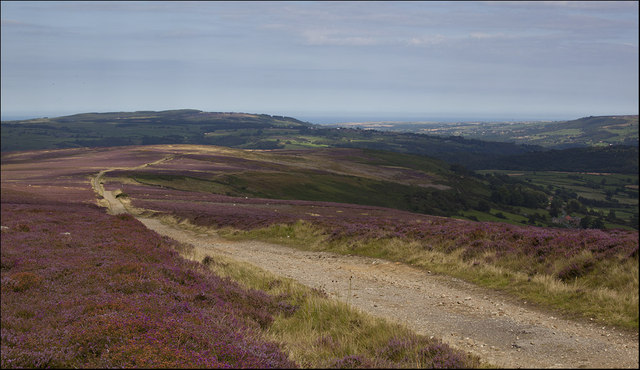 Big view from Glaisdale Rigg