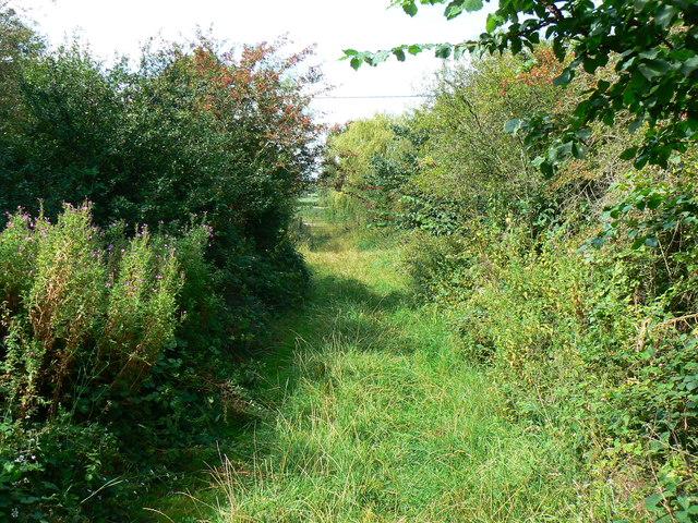 West along Rigsby's Lane near Minety