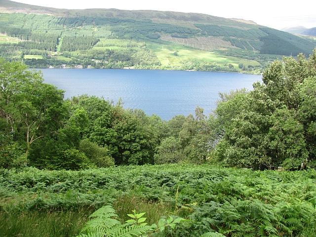 Bracken covered hillside above Loch Tay