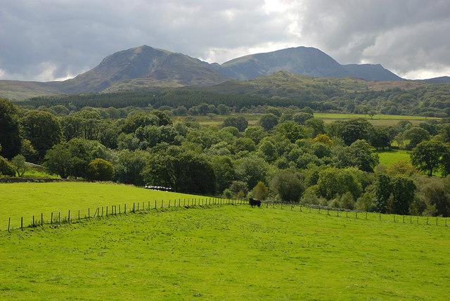 Fields above the Afon Clywedog