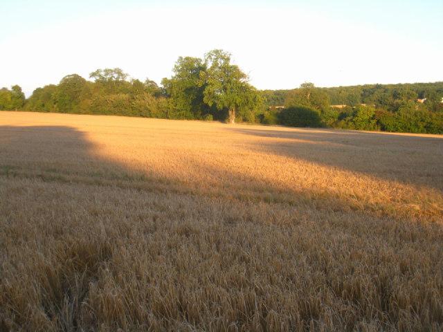 View across Oakley Park