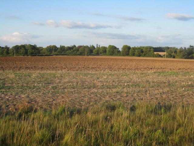 Fields by Oakley Park