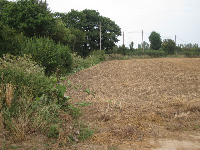 Field by Eastling Road