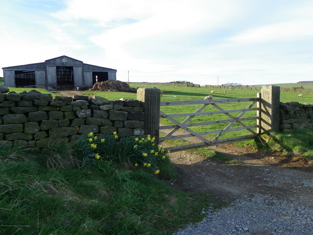 Farm buildings near Wilsill