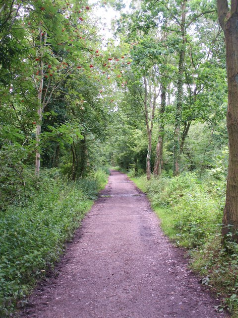 Footpath through Low Hall Wood