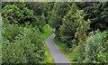 J3773 : The Comber Greenway, Belfast (7) by Albert Bridge