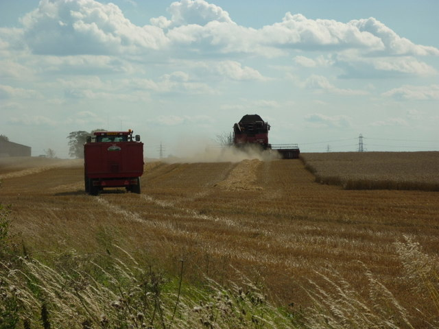 Harvesting near Benningholme Grange