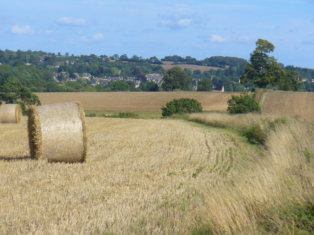 Harvest in the Evenlode Valley