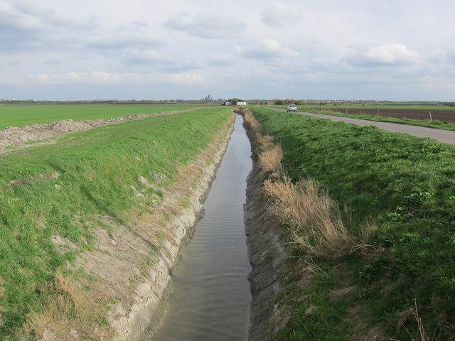 Ditch along West Fen Road
