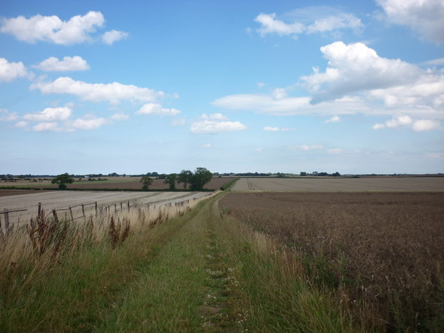 A bridleway leading to Folly Lane (track)