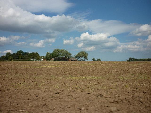 Looking towards Cobble Hall Farm