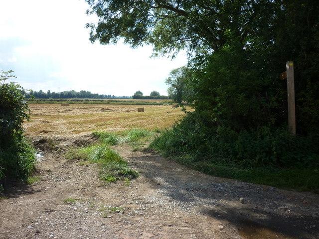 A footpath off Rise Lane, Rise