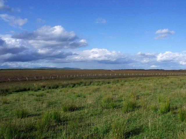 Garbethill, rough grazing