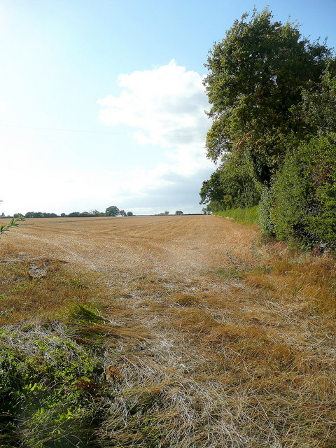 Harvested field near Broadstreet Farm