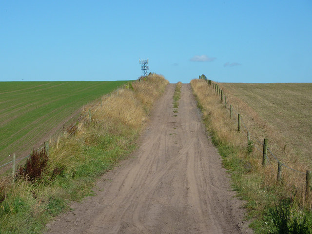 Track to Carlton Forest Farm