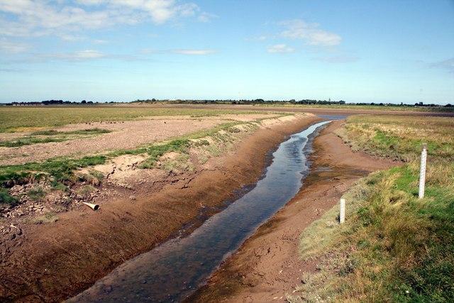Stream entering the River Clwyd (Afon Clwyd)