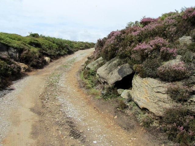 Track on Hazlewood Moor
