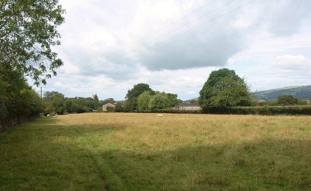 Field near Cheddar