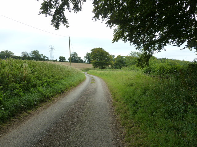 Narrow lane from Colworth Farm to West Dean