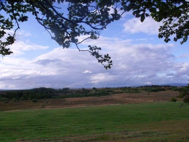 Threaprig, pasture
