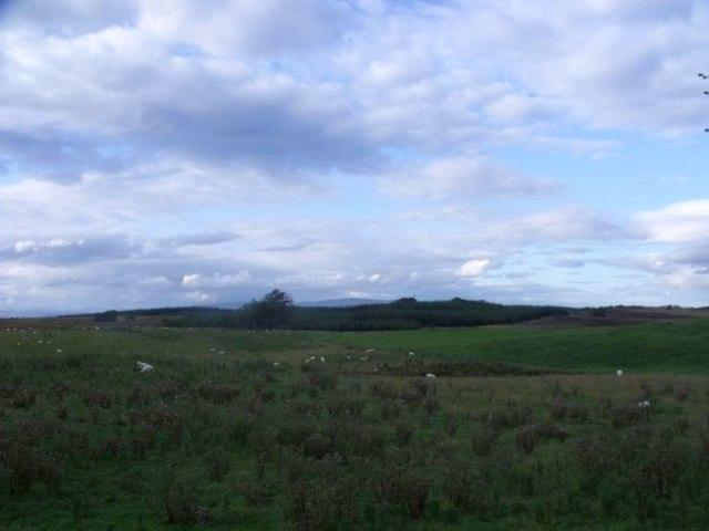 Wester Jawcraig, rough grazing