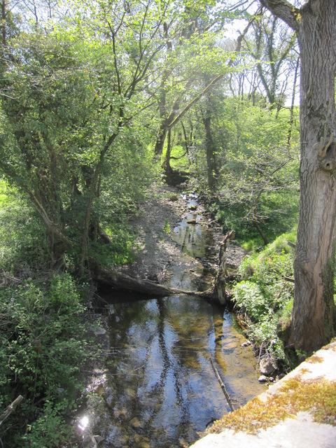 Aspland Beck from Parkfoot Bridge