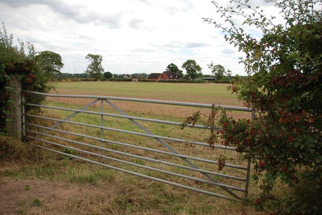 Across Field to Farm