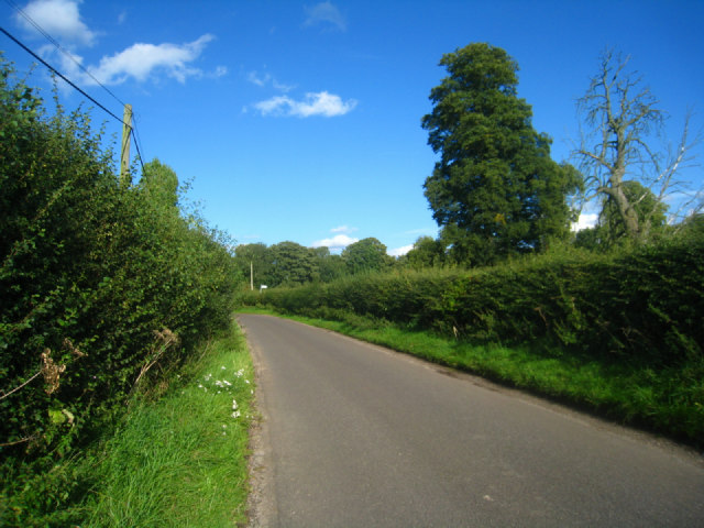 Lane by Steventon
