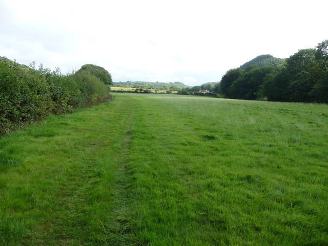 Footpath in fields in the valley of the Afon Aeron