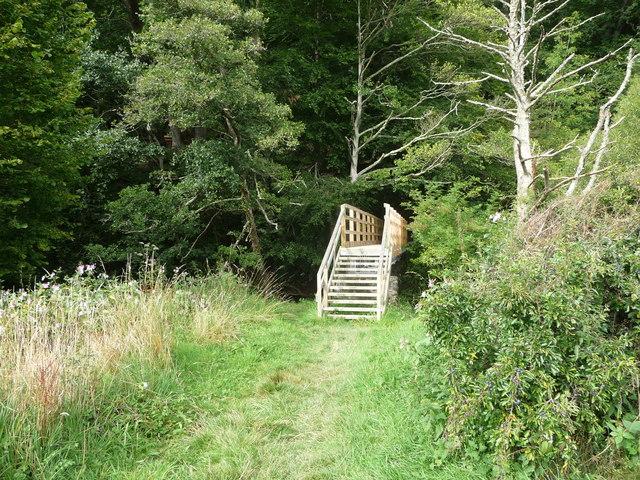 Footbridge over the Afon Aeron near Llanerchaeron church