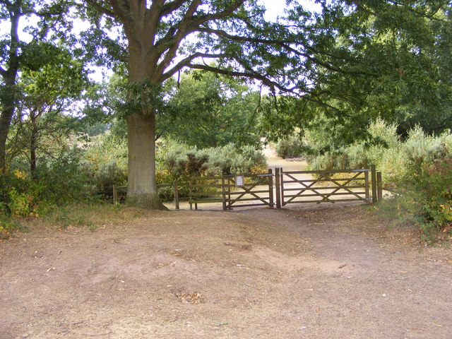 Kinver Edge Gate