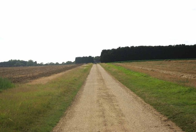 Path to Fingrith Hall