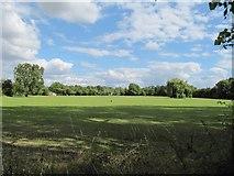 SU3987 : School playing field by Bill Nicholls