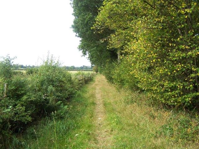 Footpath Near Bangley Park